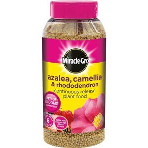 Miracle-Gro Continuous Release Plant Food Shaker Jar 1kg - Azalea, Camellia & Rh