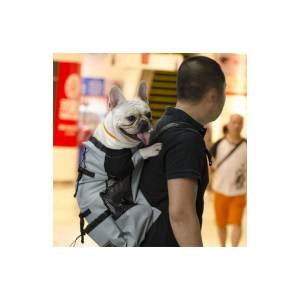 Slowmoose (Gray, L) Breathable Pet Dog Carrier Bag for Large Dogs - Golden Retriever Bulld