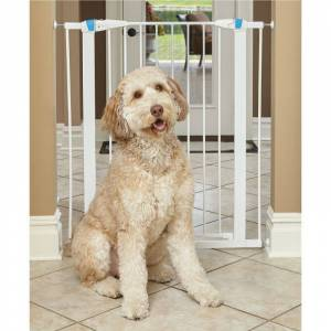 MIDWEST METAL PRODUCTS Midwest GLOW White Steel Pet Gatel 29in