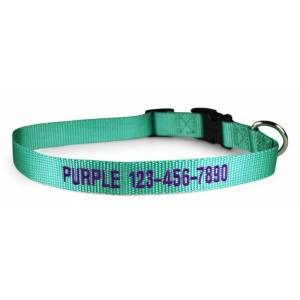 LEATHER BROTHERS Personalized Mint Green Nylon Dog Collar 14-20in
