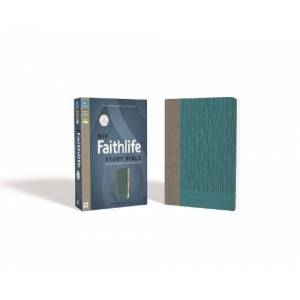 NIV Faithlife Study Bible (Gray/Turquoise Leathersoft, Thumb Indexed)