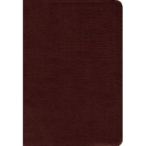 Amplified Holy Bible (Thumb Indexed, Burgundy, Bonded Leather)