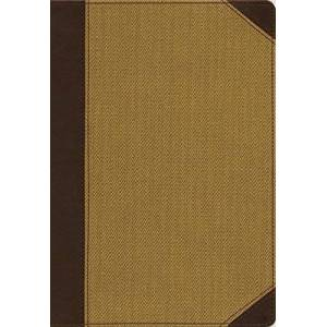 NIV Cultural Backgrounds Study Bible (Tan Leathersoft, Thumb Indexed)