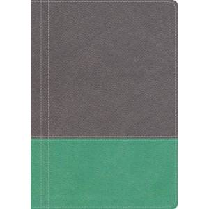 The Modern Life Study Bible (NKJV, Thumb Indexed, Dove Gray/Lagoon Green Leathersoft)