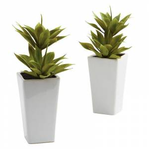 nearly natural 2-pc. Mini Agave Arrangement Set, Green