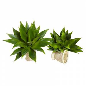 nearly natural 2-piece Agave Succulent Plant Set, Multicolor