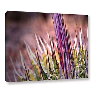 "ArtWall Agave Canvas Wall Art, Purple, 18""X24"""