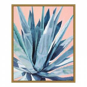 Amanti Art Agave with Coral Framed Canvas Print, Yellow, 16X20