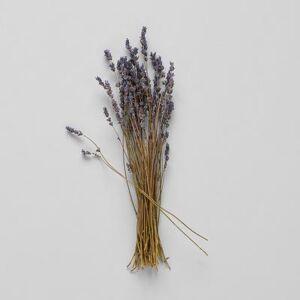 "Bloomist ""Bloomist Handpicked Dried Lavender, 13-16""""L"""