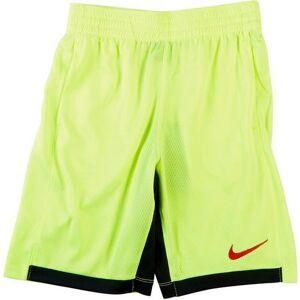 Nike Big Boys Dri-FIT Trophy Shorts