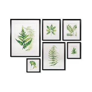 Napa Home & Garden Napa Home and Garden Set of 6 Leaf Study Watercolor Gallery