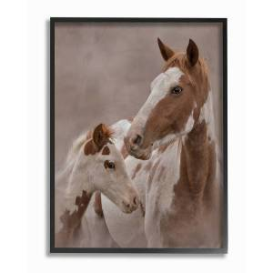 "Stupell Horse Family Photograph by Larry McFerrin Framed Art - Size: 11"" x 2"" x 14"""