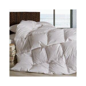 Dreamstead by Cuddledown Warmer Down Alt Comforter - Size: Twin