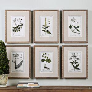 "Uttermost Green Floral Botanical Study 6-Piece 22 3/4""H Wall Art Set - Style # 9G309"