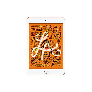 Apple iPad mini 64GB in Gold