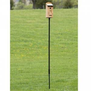 Spring Hill Nursery Ground Anchored Steel Pole