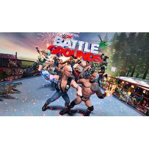 2K Games WWE 2K Battlegrounds