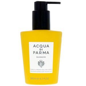 Acqua Di Parma - Collezione Barbiere Brightening Shampoo for Grey and White Hair 200ml  for Men