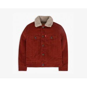 Levi's Boys 4-7x Sherpa Lined Trucker Jacket 6  - Burnt Orange - Size: 6