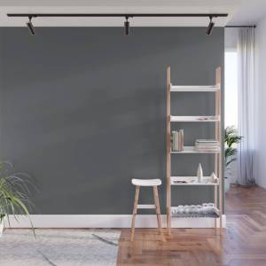 Society6 Dark Lead Gray Solid Color Pairs W/ Behr Paint's 2020 Forecast Trending Color Graphic Charcoal Wall Mural by simplysolids