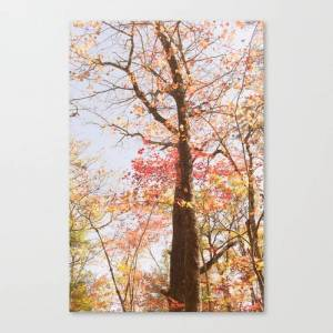 Society6 October Colors Canvas Print by annbphoto