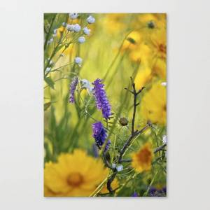 Society6 Perfect August Afternoon Canvas Print by jacmac7