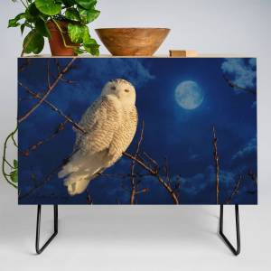 Society6 The Owl And Mystical Moon Credenza by owlgoddessphotography