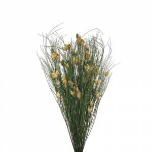 Vickerman H1BFS000-2 15-20 in. Short Stems Bell Grass with 5-6 oz Bundle Nat Seed Pods