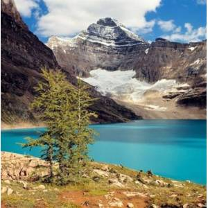 Posterazzi PDDCN02RER0008 British Columbia Yoho Np Lake Mcarthur Poster Print by Ric Ergenbright - 23 x 23 in.