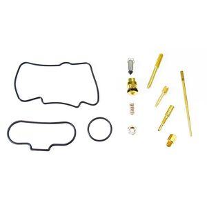 Go-for-Gold Carburetor Carb Complete Master Repair Rebuild Kit, Honda, CR125R - 2000-2001