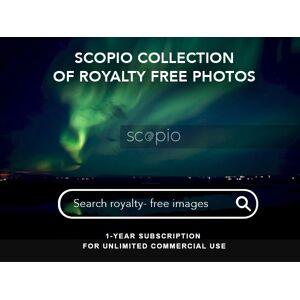 DealFuel Access A Treasure Trove Of Royalty-Free Photos With Scopio / 1Yr Subscription