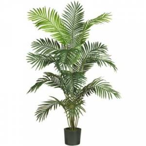 Ashley Furniture Home Accents 6' Paradise Palm, Green