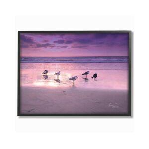 "Stupell Seagulls On Purple Sunset Beach by Ramona Murdock Framed Art - Size: 11"" x 2"" x 14"""