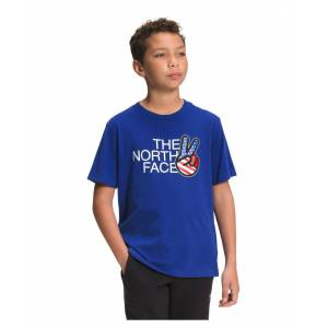The North Face Big Boys Americana Logo-Graphic T-Shirt