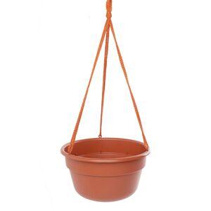 """Bloem 12"""" Dura Cotta Hanging Basket"""