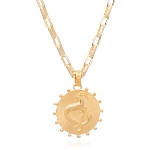 Jackson Women's Gold Statement Zodiac Art Coin Capricorn Necklace Rachel Jackson