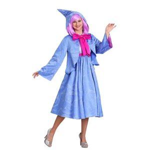 Cinderella Fairy Godmother Women's Costume