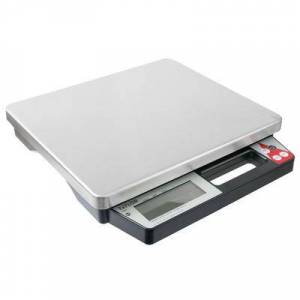 Taylor TE50 50 lb. Digital Portion Control Scale with Built-in Handle